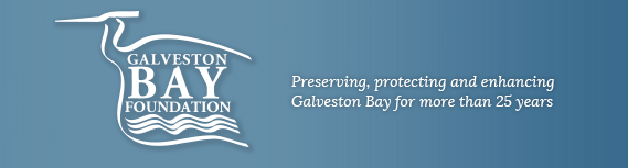 49d8ffd7 08f7 43b0 880e e19c9b83eb16 Galveston Bay Foundation to Reveal Bays Report Card