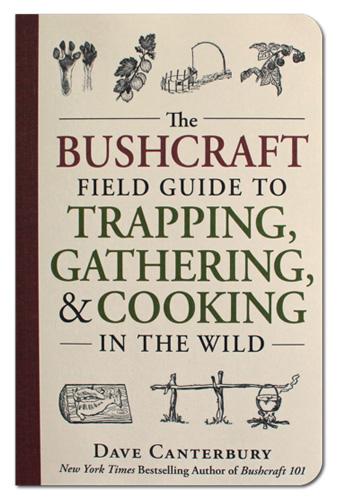 bushcraft Dave Canterburys Wild Guide