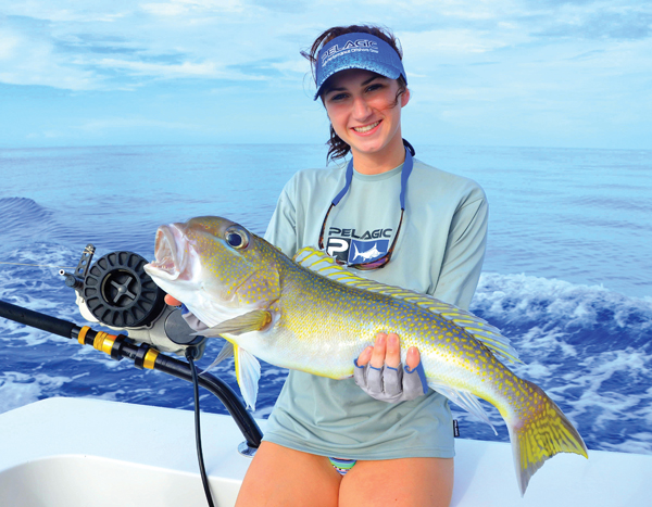 What types of fish can you catch in the gulf mexico all for Types of fish in the gulf of mexico