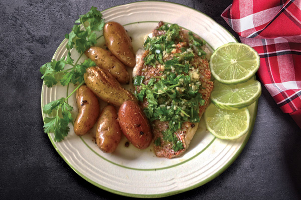 limecilantro snapper recipe The Galley: Red Snapper Two Ways