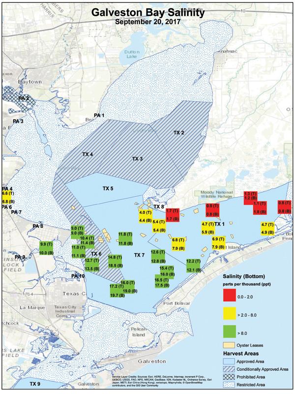 Gbaysalinity Galveston Oysters After Hurricane Harvey