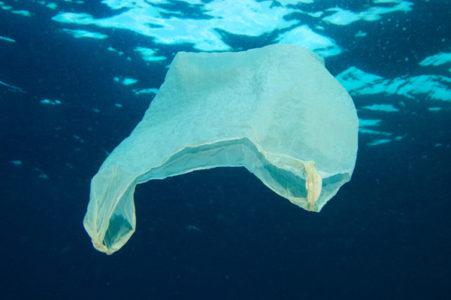 plastic trash 451x300 Plastic in Paradise