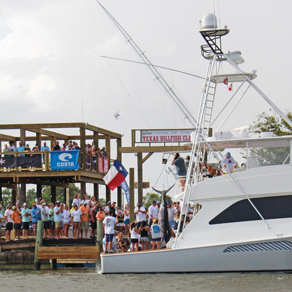 tbc draggin up 2019 Texas Billfish Classic to be the best yet