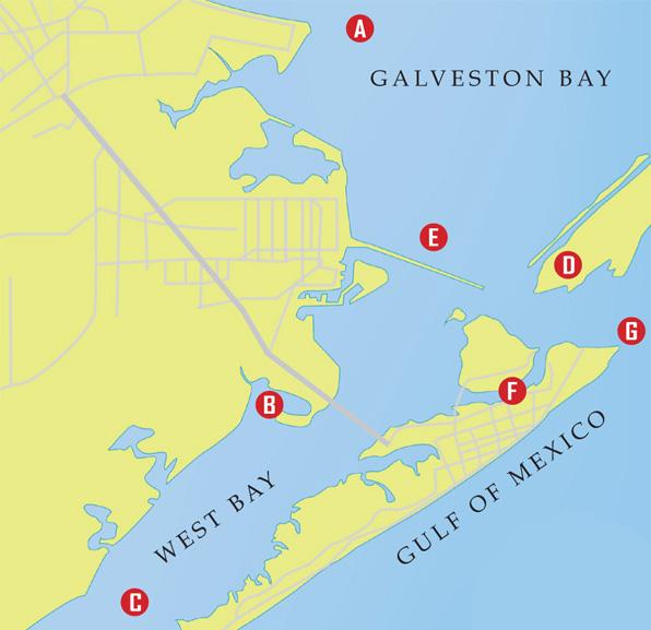flounder map Galveston Flounder Run: A Quick Guide