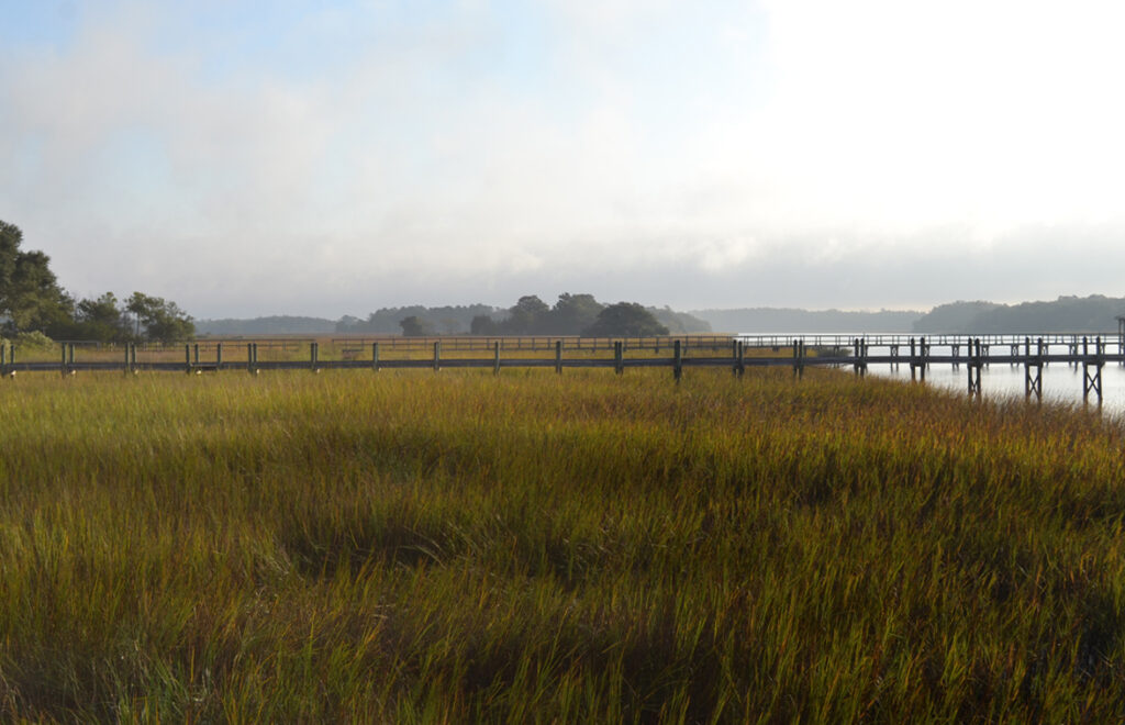 landscape 1024x660 Low Country: Fishing South Carolina with D.O.A. Lures
